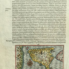 Antique Map Bali by Hondius