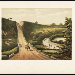 Antique Print of a Road near Cipanas (Java) by Perelaer (1888)