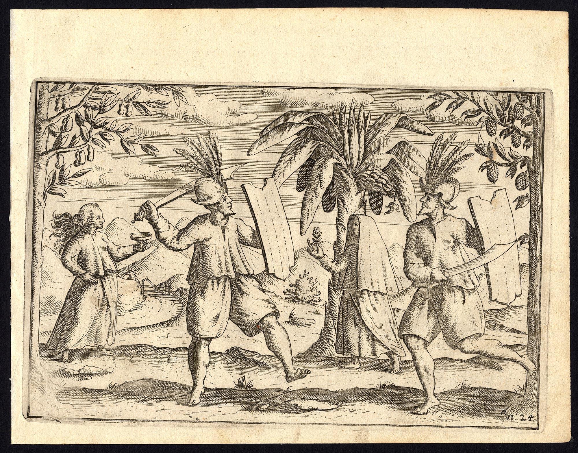 Pl.24 Afteeckeninge van de Molucxsche schermers - Commelin (1646)